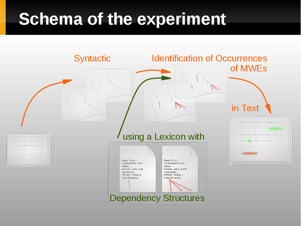 schema of the experiment